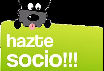 socio.png