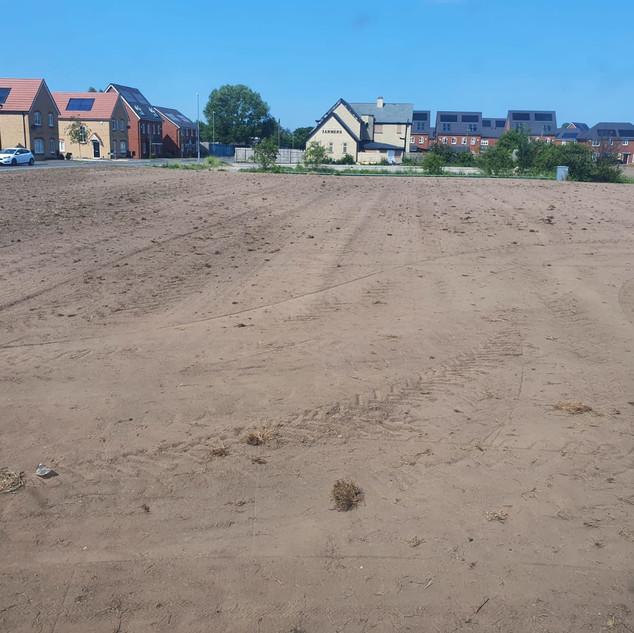 Open Space Grass Seeding