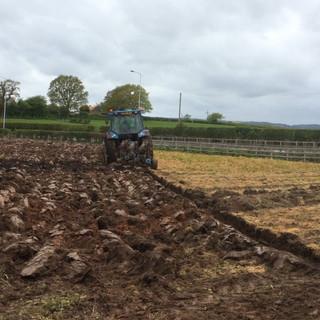 Ploughing & Sub Soiling