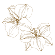 Square Gold (2).png