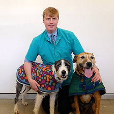 Dr Charles Webb, Veterinarian at Brudine Veterinary Hospital with 2 dogs wearig coats