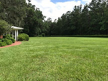 Wedding Garden Front Lawn