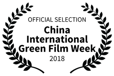 OFFICIAL SELECTION - China International