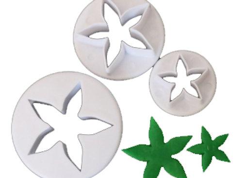 Flor - Star Flower (3)