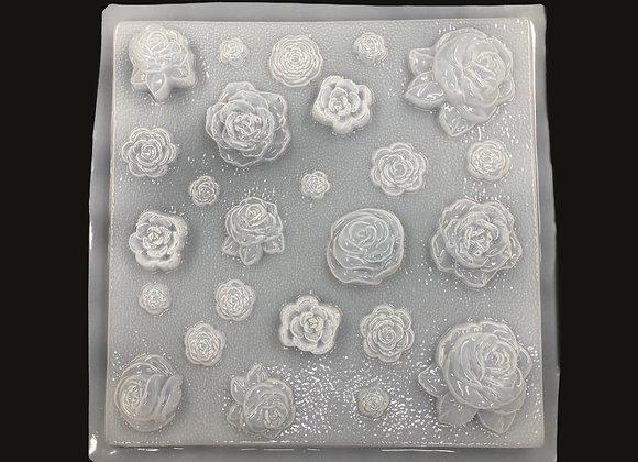 Jardin de Rosas Diferentes (25)