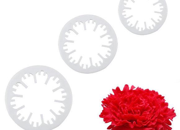 Flor - Carnation (3)
