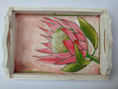 TP01 -Proteas in a tray