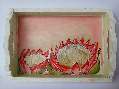 TP02 -Proteas in a tray