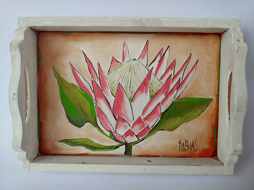 TP03 -Proteas in a tray