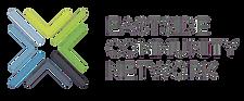 ECN Logo (gray) (1) (002) (1).png
