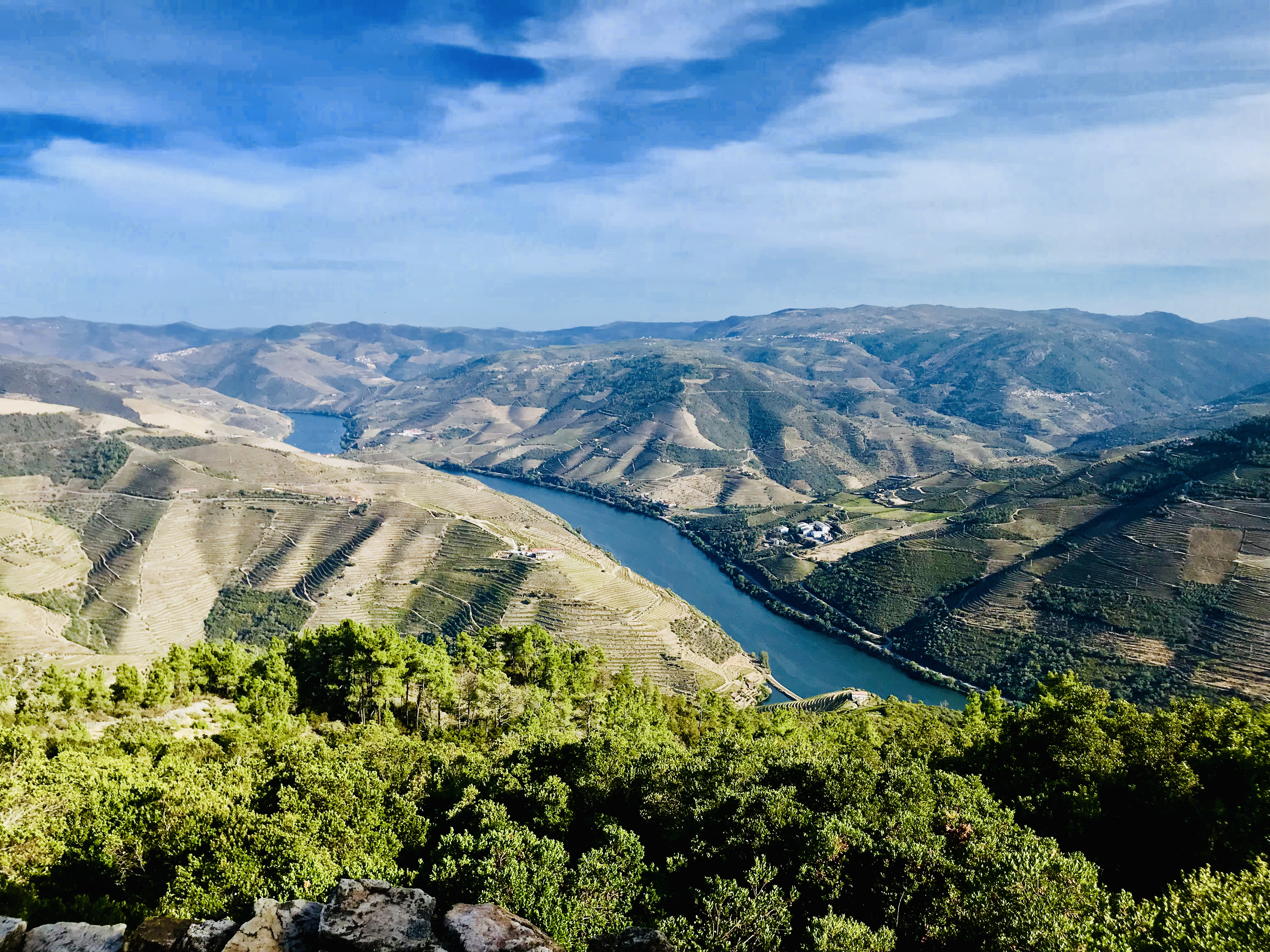 Enchanted Douro