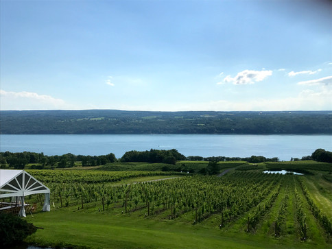 Finger Lakes beauty