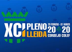 COLEF Castilla y León será representado por primera vez por tres miembros en los Plenos del Consejo