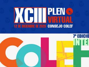 COLEF Castilla y León asiste al 93º Pleno y al 7º INTERCOLEF