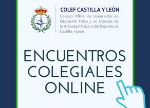 Durante el mes de mayo, COLEF Castilla y León organizó los Encuentros Colegiales online