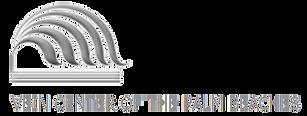 logo vein center of the palm beaches