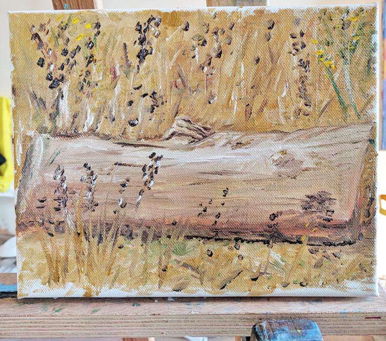 ציור מהתבוננות בטבע- צבעי שמן