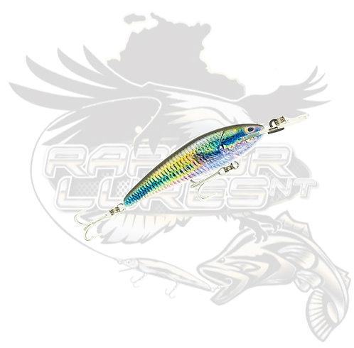 T/S - Live Series Suspending 7+ Rainbow Fish