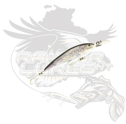 T/S - Live Series Suspending 7+ Spangled Perch