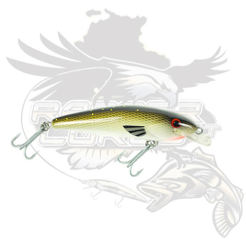T/S - Jack Snax 'Spangled Perch' shallow