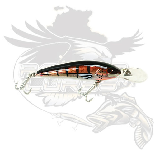 Raptor Jack Snax 'CopperChrome' 10+