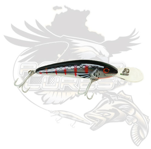 T/S - Raptor Jack Snax 'Black Chrome' 10+