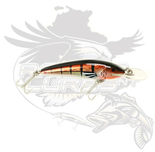 Raptor Jack Snax 'Copper Chrome' 7+