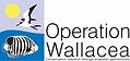 Opwall logo.png