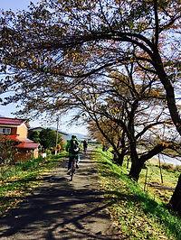 bike tour3.jpg