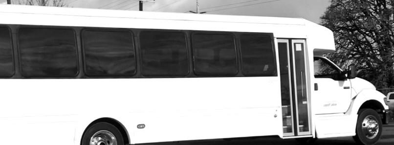 bus%25202_edited_edited.jpg