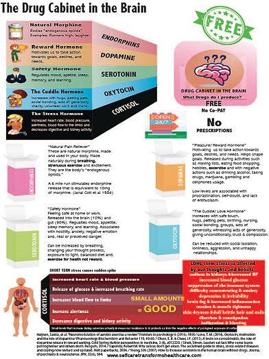 Drug Cabinet FINAL PRINT.jpg