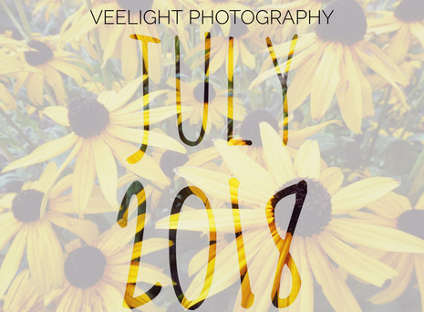 July: Projects & Planning!