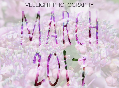 March: Hello There, Spring!