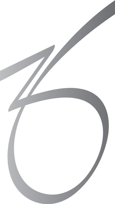 ZO Icon-Silver Reflect.jpg