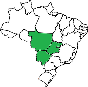 centro oeste.png