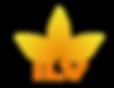 logo-ilvASECAS.png