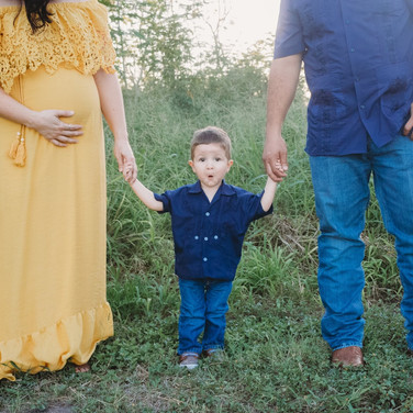 Pregnant mother and father holding toddler sons hands