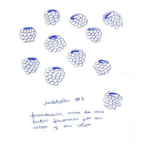 03_Frambuesas_Insta.jpg