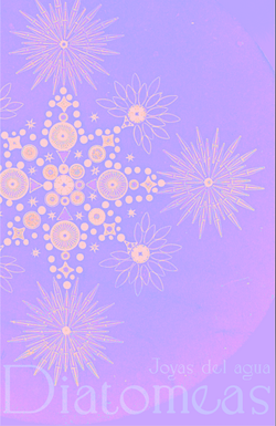 Diatomos