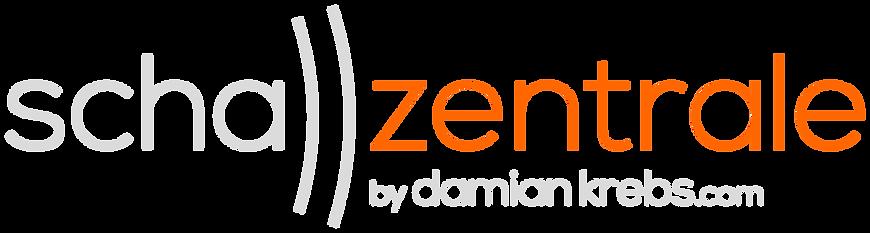 SZ Logo Grau mit Rand.png