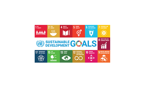 SDGS website-01.png