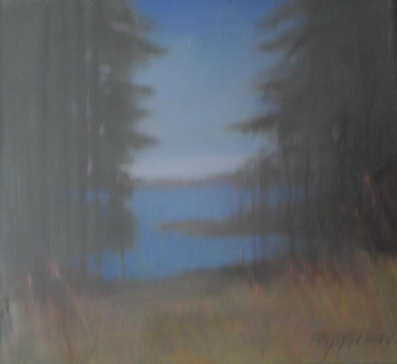 13. Лесное озеро, 2014