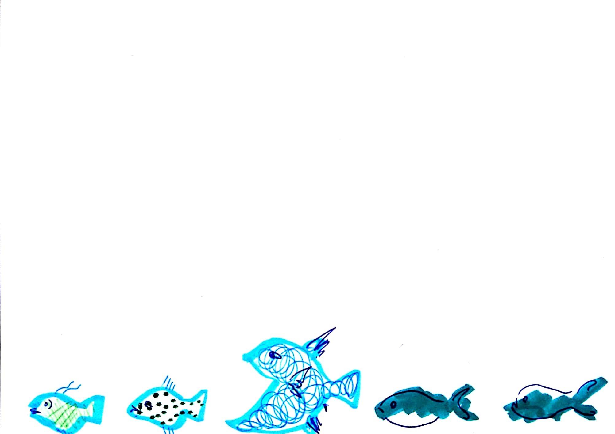 20171002Fish3
