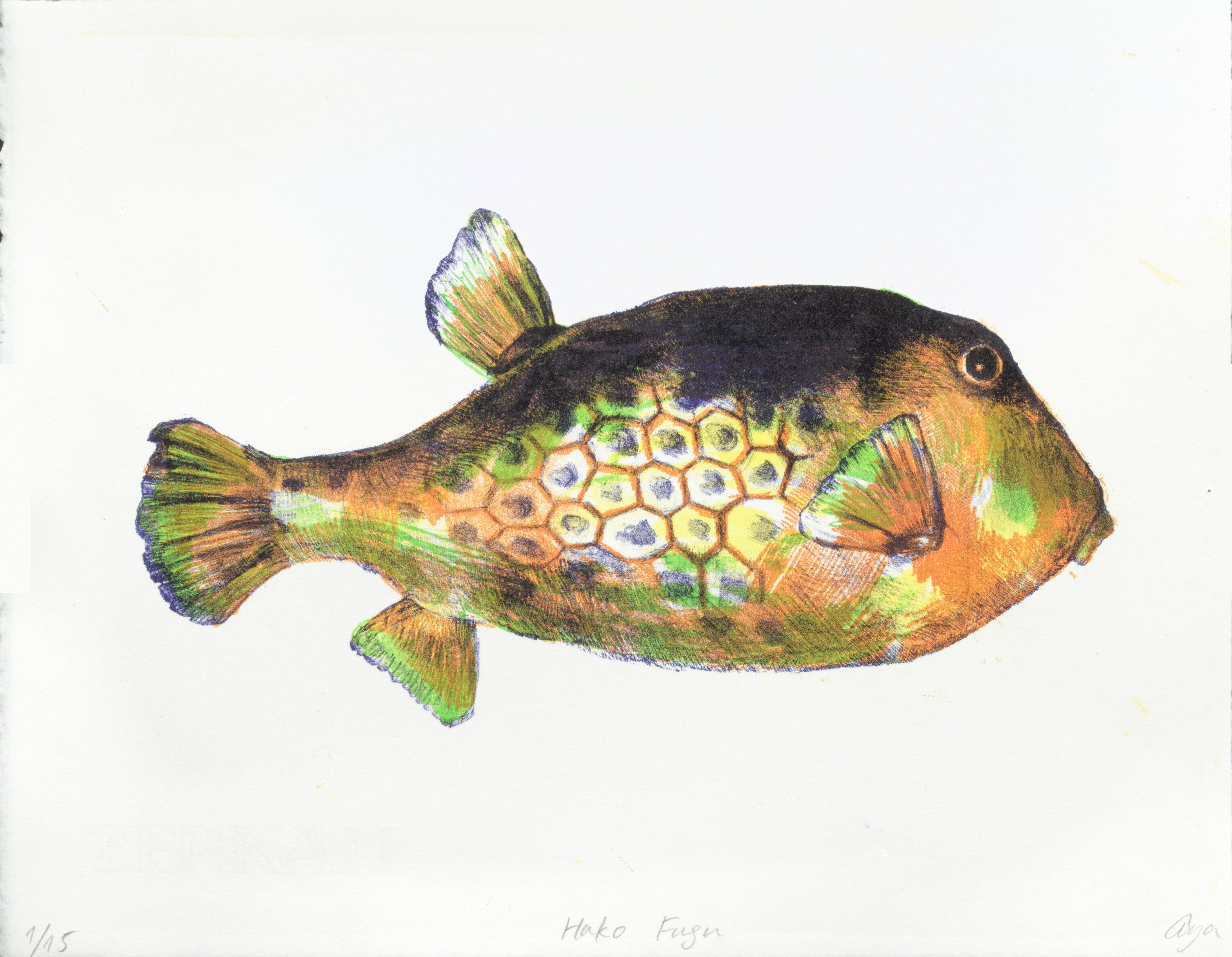 Hakofugu01