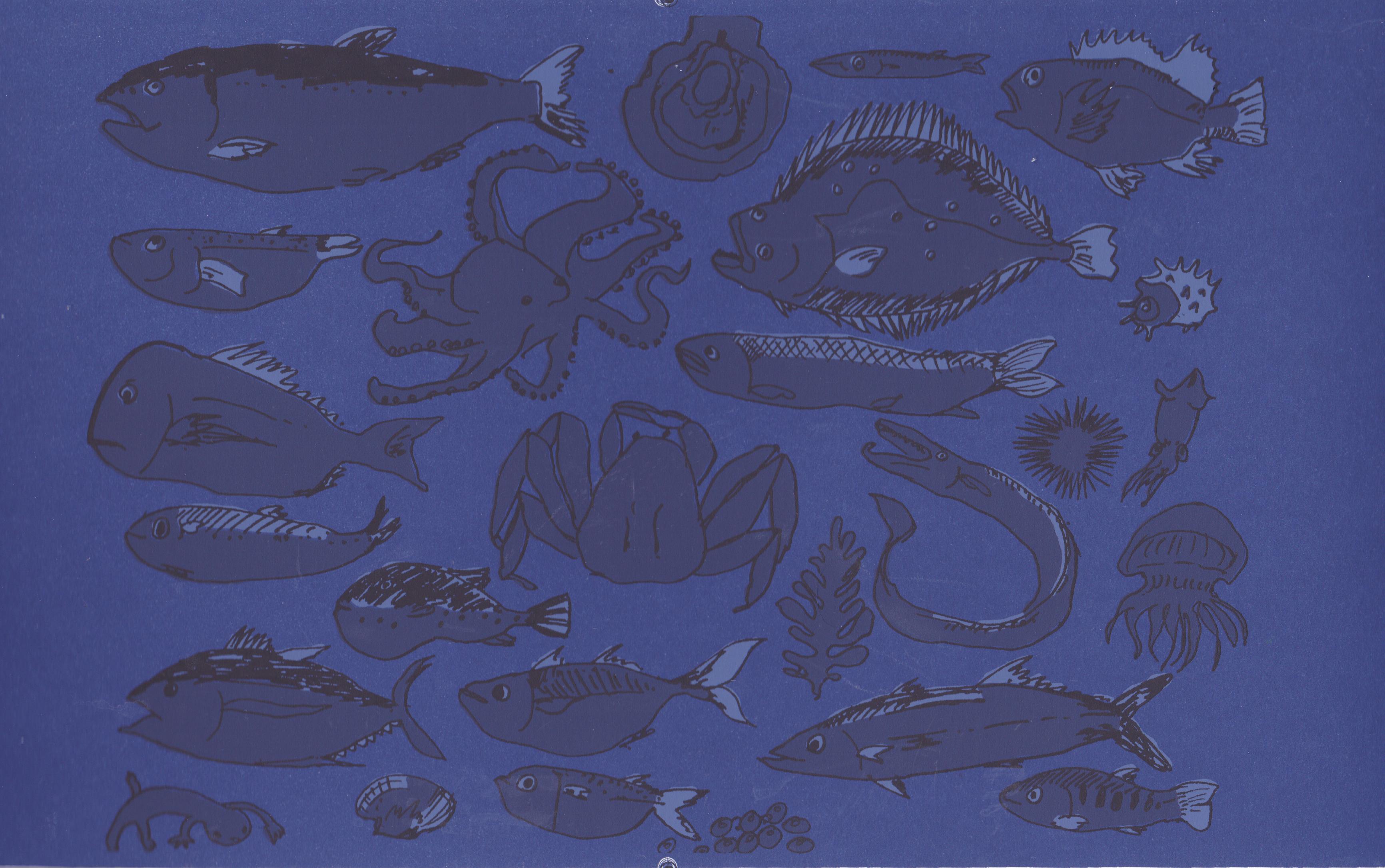 fish.tizi