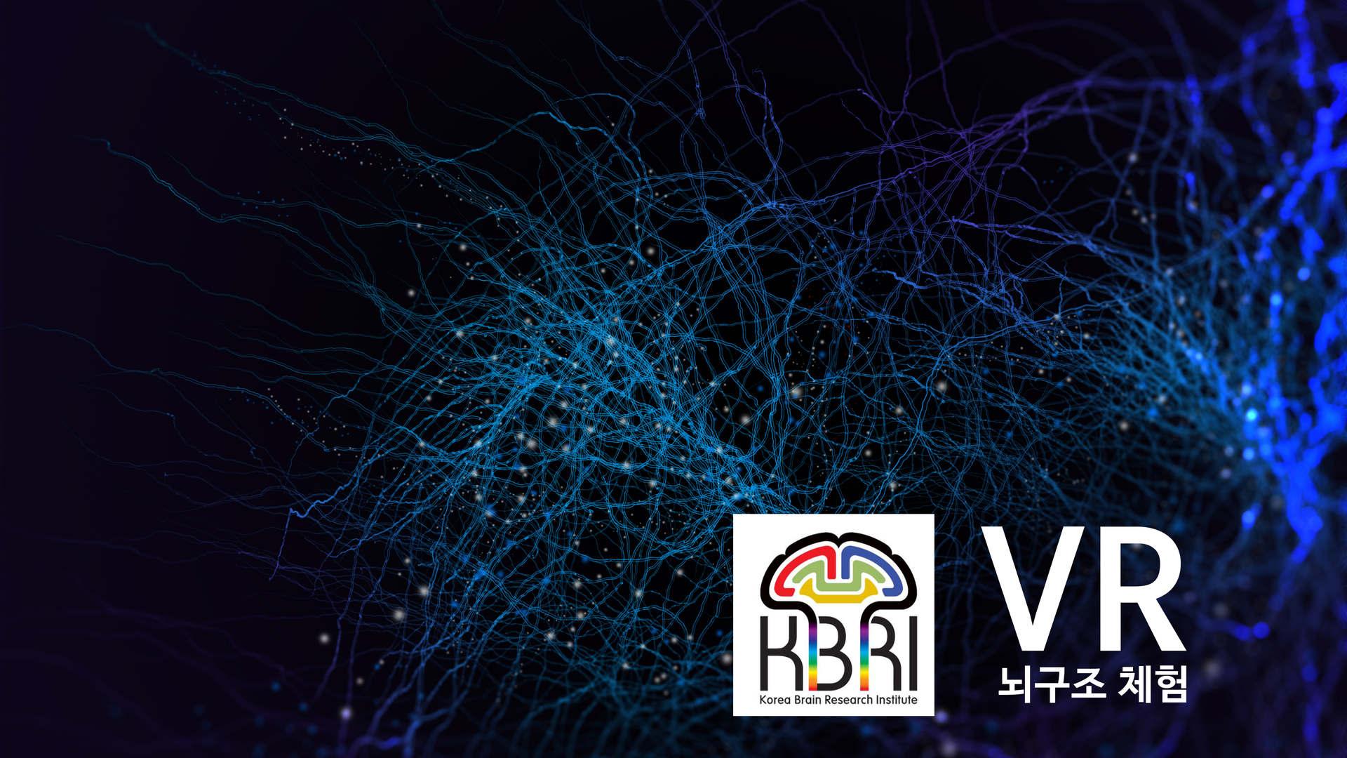 뇌구조 VR체험