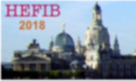 Lion Nano-Systems @ HeFIB 2018