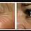 Thumbnail: Rose Wrinkle Blur Night Moisturizer 1.5oz