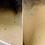 Thumbnail: Wart /Tag Removal 0.5oz Treatment