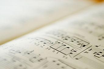 Settore Musica Progetti Futuri organizza attività e concerti di musica classica, pop,rock, jazz a Manfredonia, Foggia, Italia e all'estero